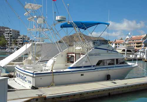Cabo Magic Dos, Fishing Charter Boat in Cabo San Lucas