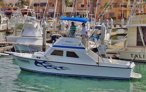 Cabo Charter Boat, Reel Slippery Lizzard, 43 Bertram